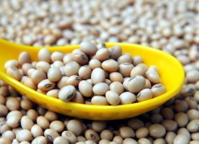 Health Benefits Of Soya Beans