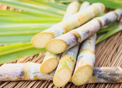 Sugarcane Health Benefits