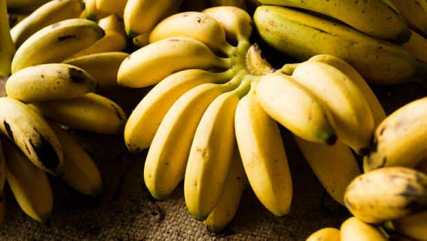 Health Benefits Of Bananas For pregnant Women