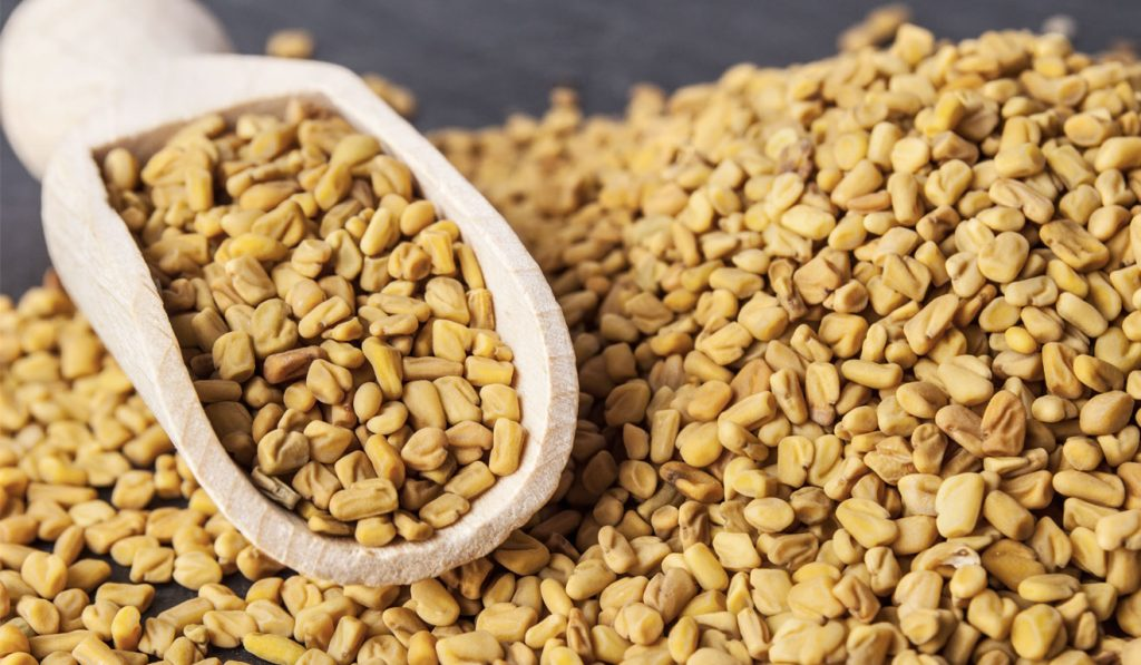 Health And Beauty Benefits Of Fenugreek