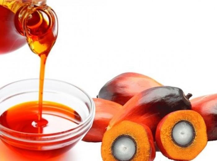 7 Superior Advantages Of Palm Kernel Oil palm kernel oil