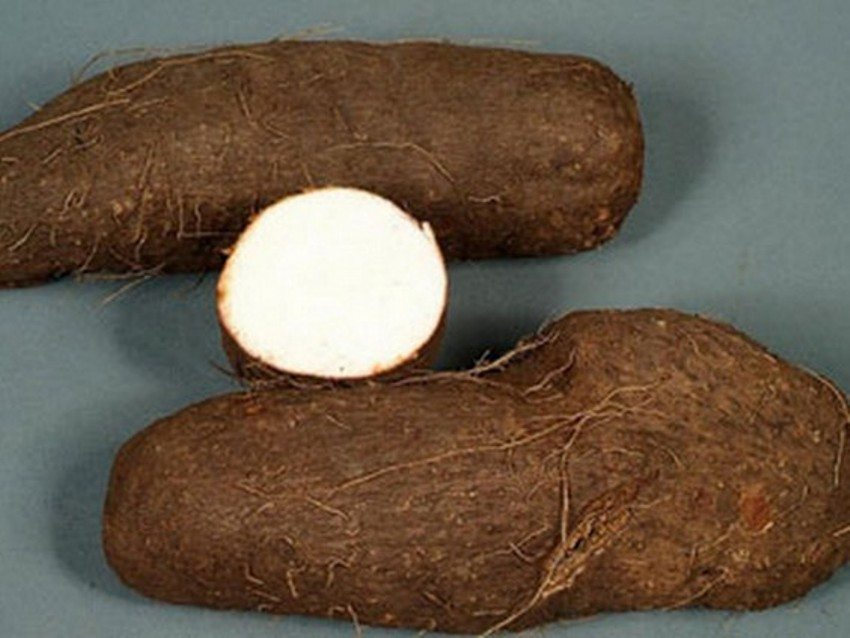 Water Yam Health Benefits