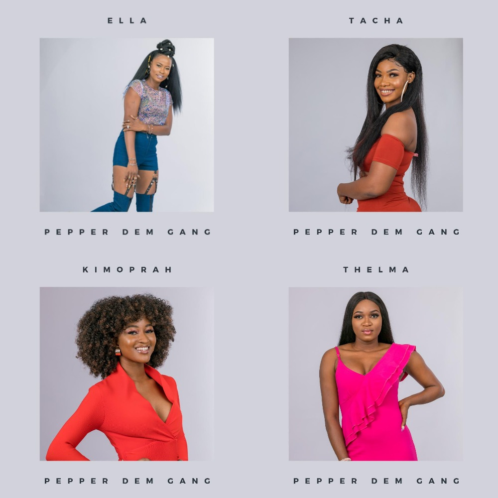 bbnaija 2019 female housemates